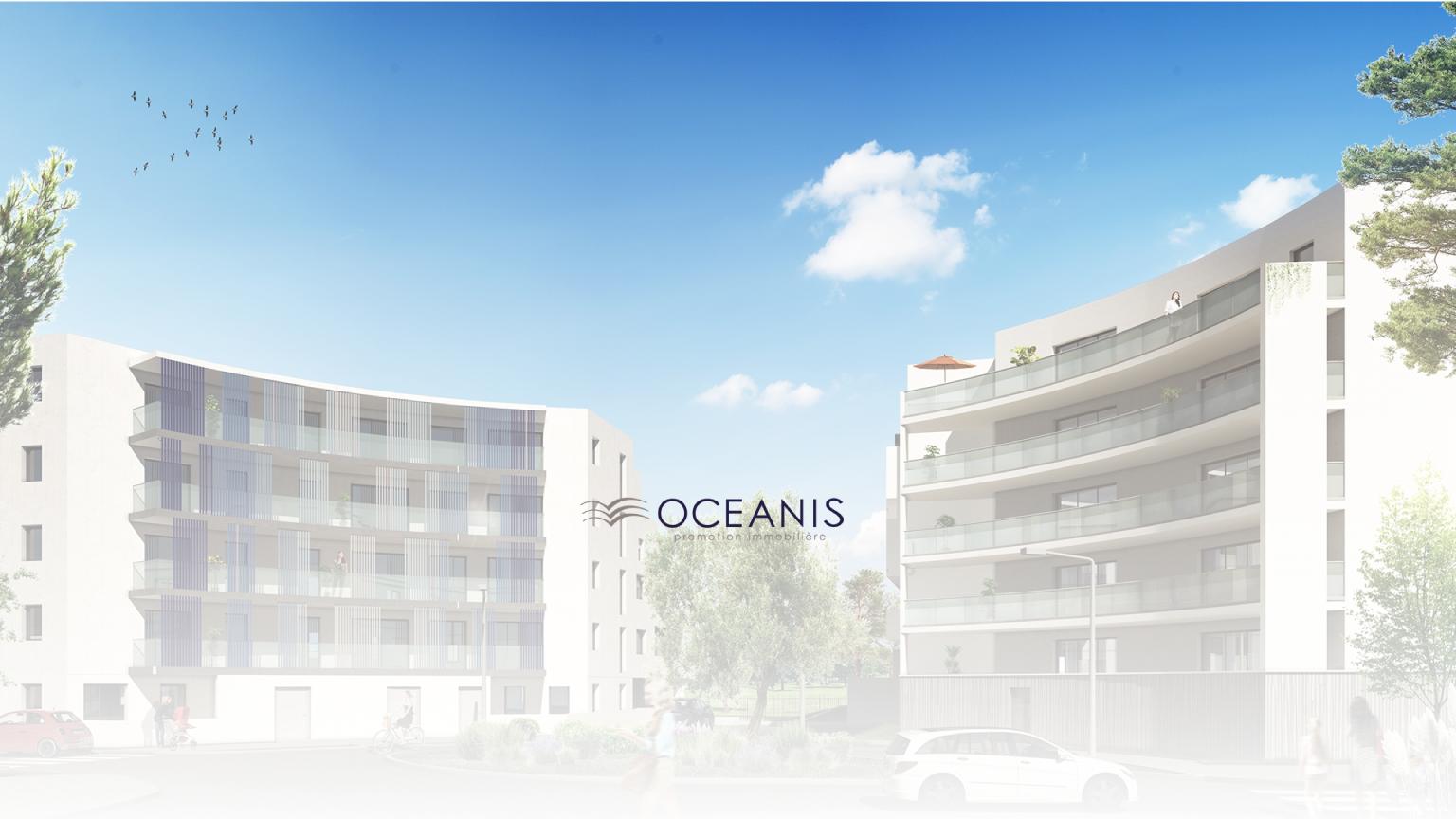 Banner-Web-Oceanis-3